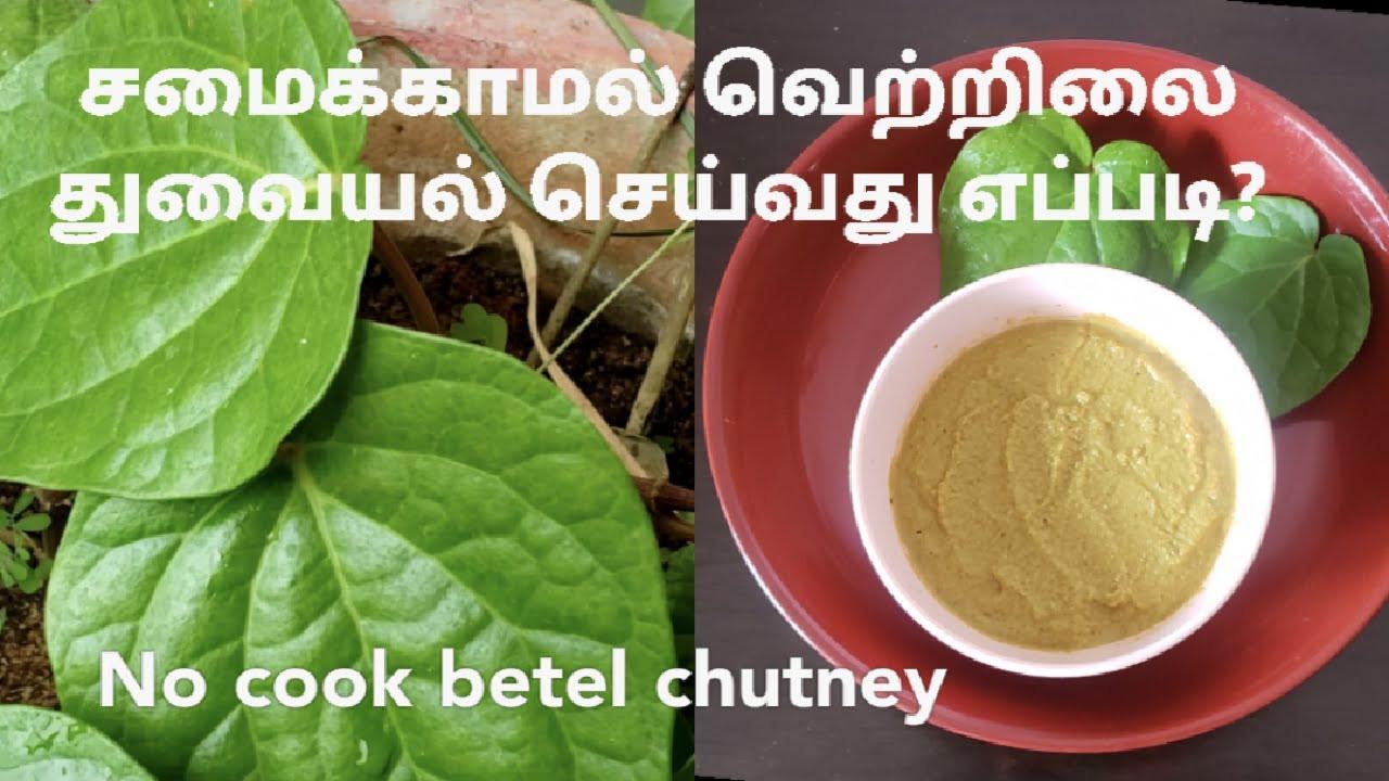 Betel chutney|No cooking|Healthy n tasty| வெற்றிலை சட்னி - YouTube